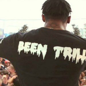 trillectro-music-festival-the-after-movie