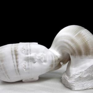 Paper-Sculptures-by-Li-Hongbo-23-3