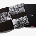 Supreme: Cherry Skate Video Pack
